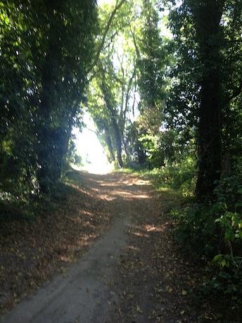 8_chemin_vers_village